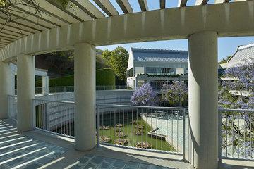 Krasnow Terrace
