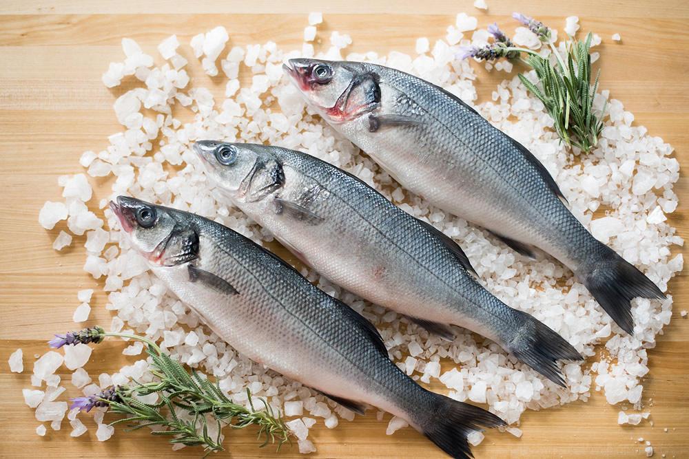 Fresh whole branzino fish also known as mediterranean for What is branzino fish